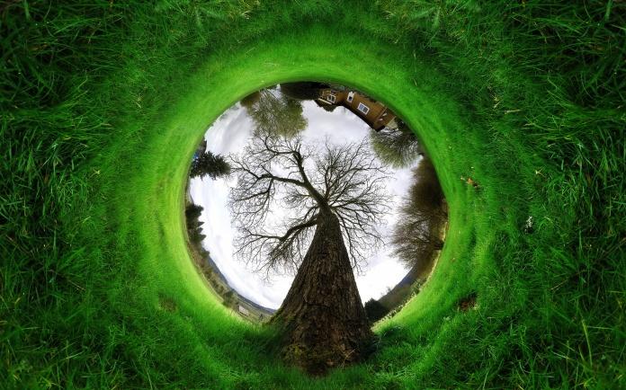 green-grass-landscape-photo-wide-pc