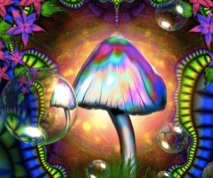 magic_mushroom